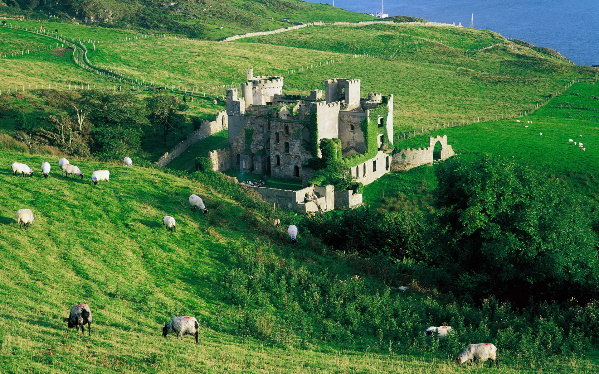 Ирландия. Co Galway, Clifden Castle