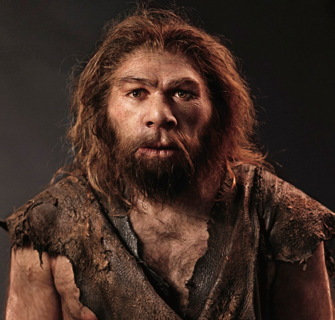 the life of the neandertals Neanderthals were people, too  for decades, when evidence of a more advanced neanderthal way of life turned up, it was often explained away, or mobbed by enough contrary or undermining.